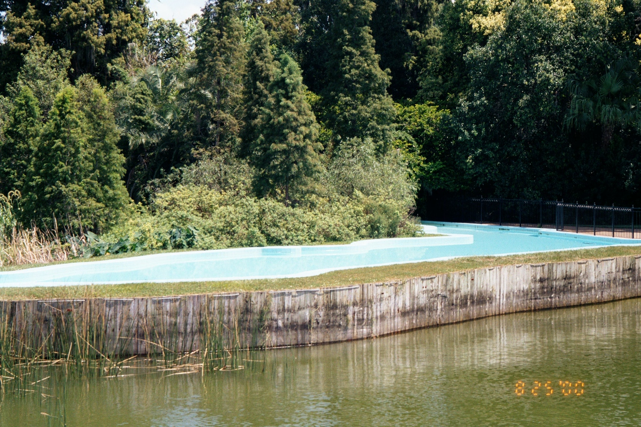 Swimming Pool in shape of Florida