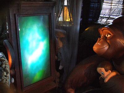 A Plasma Screen TV has been added to Tarzan's Treehouse