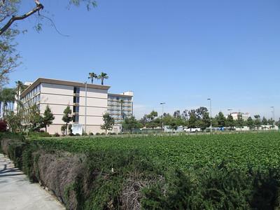 The Anaheim Maingate