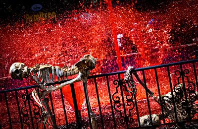 Six Flags Fright Fest - Jackson, New Jersey