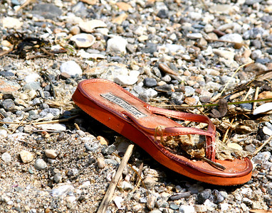 Forgotten Sandal found on Silver Sands Beach in Milford, CT.