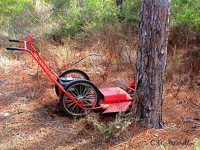 lawn mower, woods, tree, lost, florida, ST, andrews island, hiking