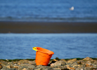 beach, sand, tide, tides, left behind,beach, water, bucket, pail, orange, kids beach pail, beach pail, blue, ocean, rocky