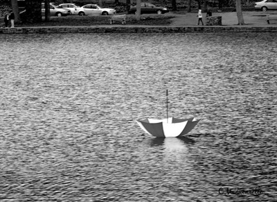 lake, pond, water, umbrella, lost, old, Hubbard Park, Meriden, Meriden CT. rain, black and white, B&W
