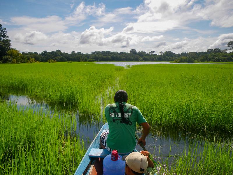 Exploring the Amazon on a small boat, Amazon, Brazil