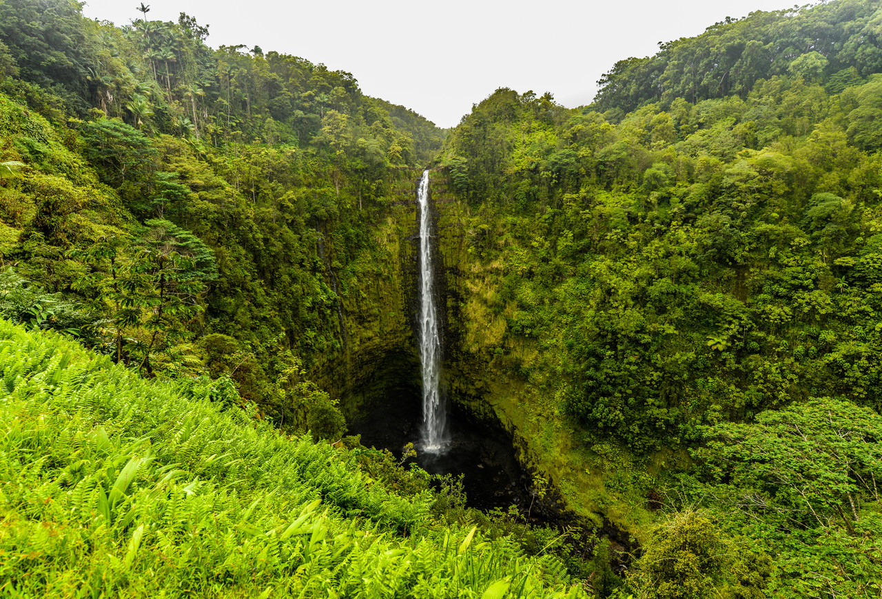 Akaka falls Hawaii, Big Island
