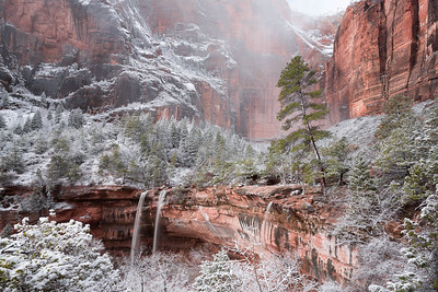 Zion NP after a snowfall