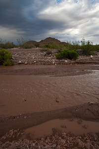 NM-2009-061: Animas, Hidalgo County, NM, USA