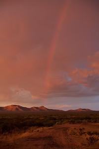 NM-2009-079: West Potrillo Mountains, Dona Ana County, NM, USA