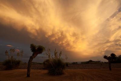 NM-2009-113: Santa Teresa, Dona Ana County, NM, USA