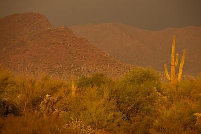 AZ-2010-105: Queen Valley, Pinal County, AZ, USA