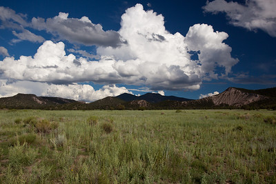 NM-2010-276: , Catron County, NM, USA