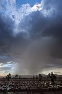 NM-2010-287: Santa Teresa, Dona Ana County, NM, USA