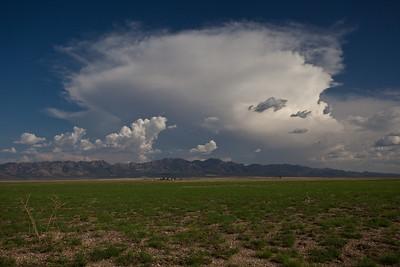 NM-2011-225: , Hidalgo County, NM, USA