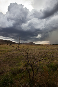 NM-2011-234: , Hidalgo County, NM, USA