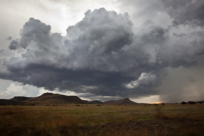 NM-2011-236: , Hidalgo County, NM, USA