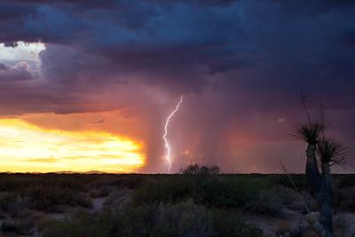 NM-2011-181: , Dona Ana County, NM, USA