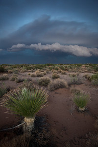 NM-2011-289: Dona Ana County, Dona Ana County, NM, USA