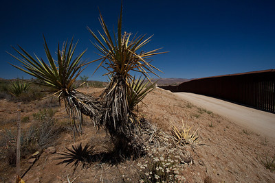CA-2009-016: Jacumba, San Diego County, CA, USA