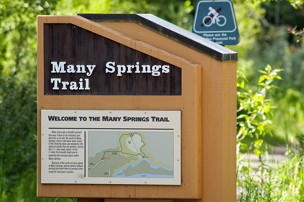 Bow Valley Park - Many Springs Trail:  A photo slide show of flora and fauna we saw along the trail.  A beautiful day and walk.