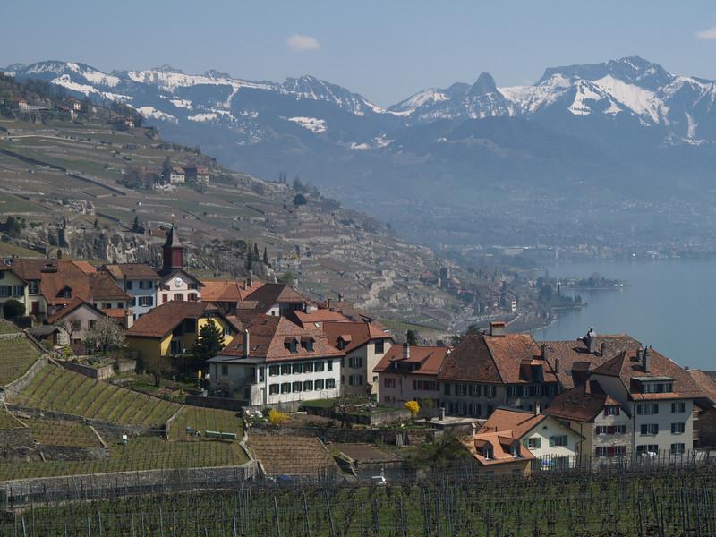 Ostern 09 - per Velo rund um den Genfersee und via Bonneville nach Annecy / Aufnahmeort  Rivaz (465 m), Lauvaux, Schweiz /  ©  Rob Tani