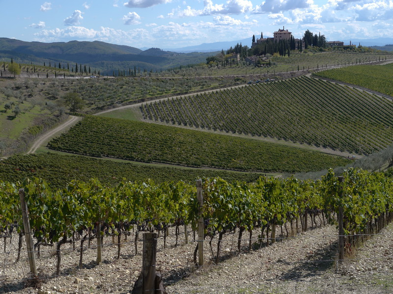 @RobAng 21.09.17, 13:30: Selvole, 563 m, Gaiole In Chianti, Toscana, Italien (ITA)