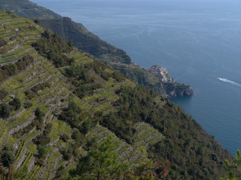 @RobAng 22.09.17, 14:58: Volastra, 347 m, Corniglia, Liguria, Italien (ITA)