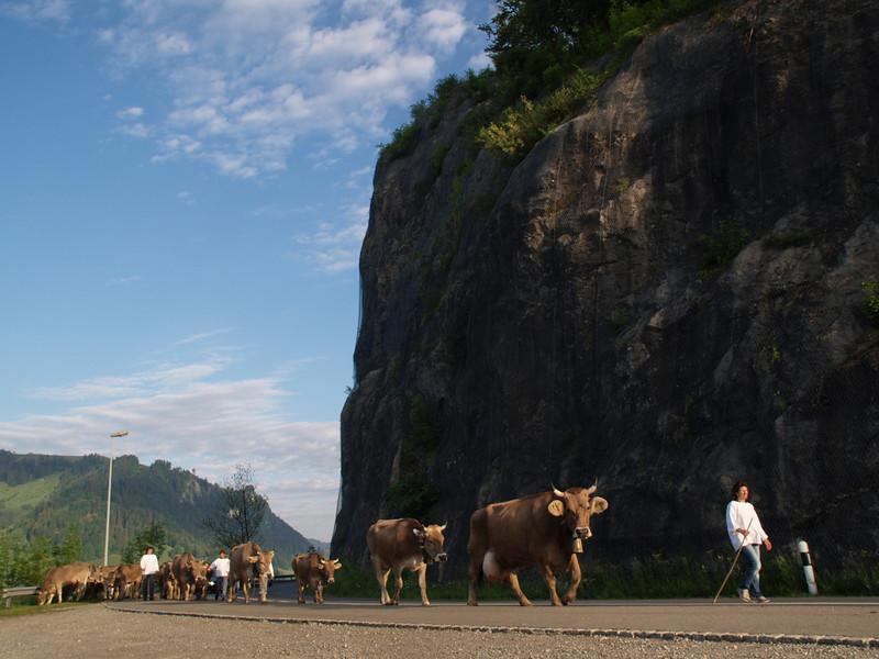©RobAng 2009/05/23 07:05:25, Euthal, 894 m // Velotour  Auffahrt 09 - Türlersee-Aegerisee-Raten-Sihlsee-Sattelegg-Wäggitalersee