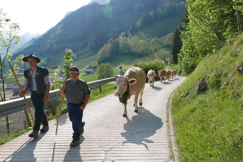 @RobAng 26.05.17, 17:58: Jaun, 1119 m, Jaun, Canton de Fribourg, Schweiz (CHE)