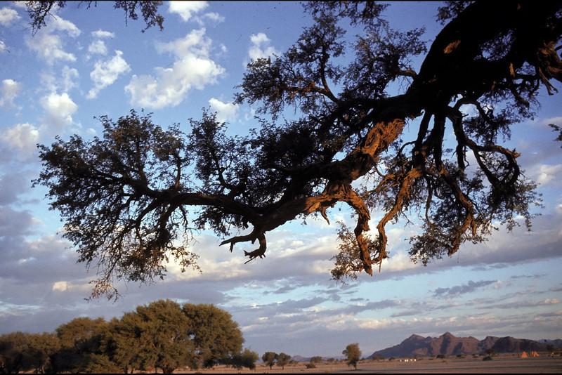 Sossusvlei, Namibia 1995, ©RobAng