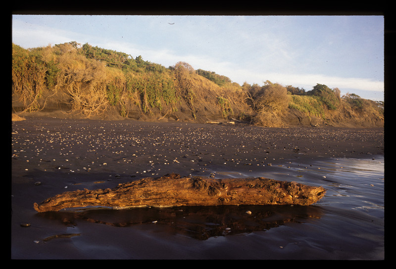 © RobAng 1989, New Zealand by bicycle, black water beach, 16.2.89