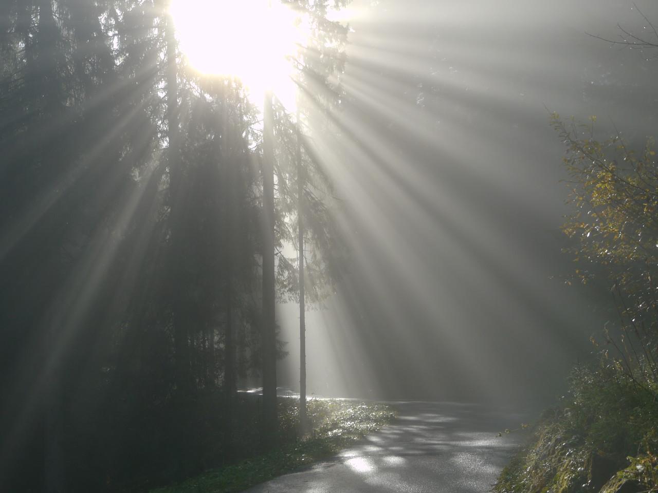 @RobAng 2012 / Aufstieg zum Rinderweidhorn, südöstl. von Pfäffikon (SZ), Kanton Schwyz, CH, Schweiz/Switzerland,  25.10.2012 10:47:03