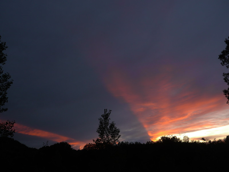 @RobAng 19.09.17, 18:27: Poderi Foci, 113 m, Campiglia, Toscana, Italien (ITA)