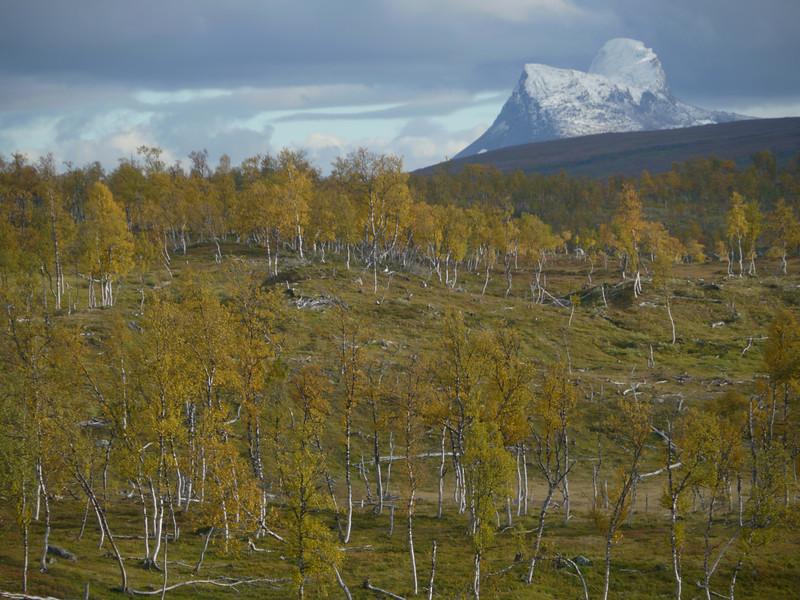 @RobAng 2012 / Kåsmolia, Røkland, Nordland, NOR, Norwegen, 460 m ü/M, 18/09/2012 16:04:38