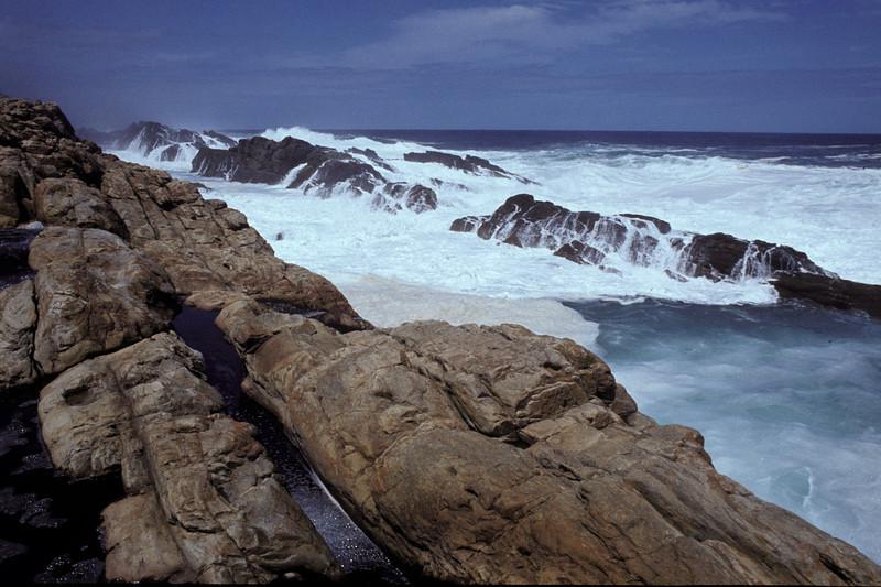 """Tsitsikama National Park, Südafrika 1985, ©RobAng<br /> """"zwischen Urwald und spektakulärer Küste"""""""