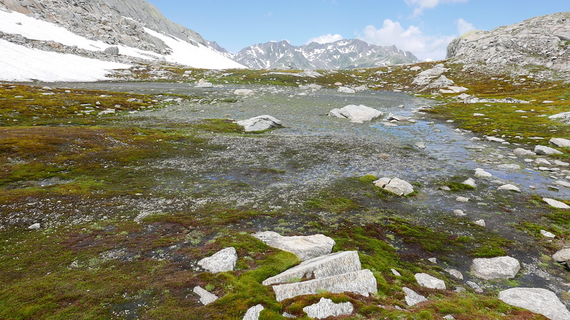 @RobAng 15.07.18, 11:40: Alpe Ritóm, 2481 m, Madrano, Ticino, Schweiz (CHE)
