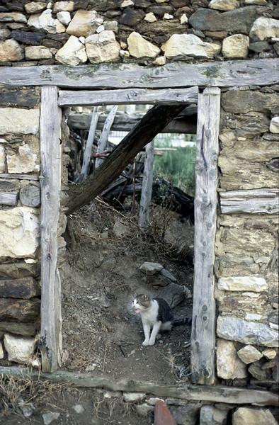 "@RobAng 2003, Nord-Griechenland per Velo: Tag7, Tsotili (""chez Apostoli"")-Neapoli-Kastoria-Lefki-Koromilla-Kastoria"