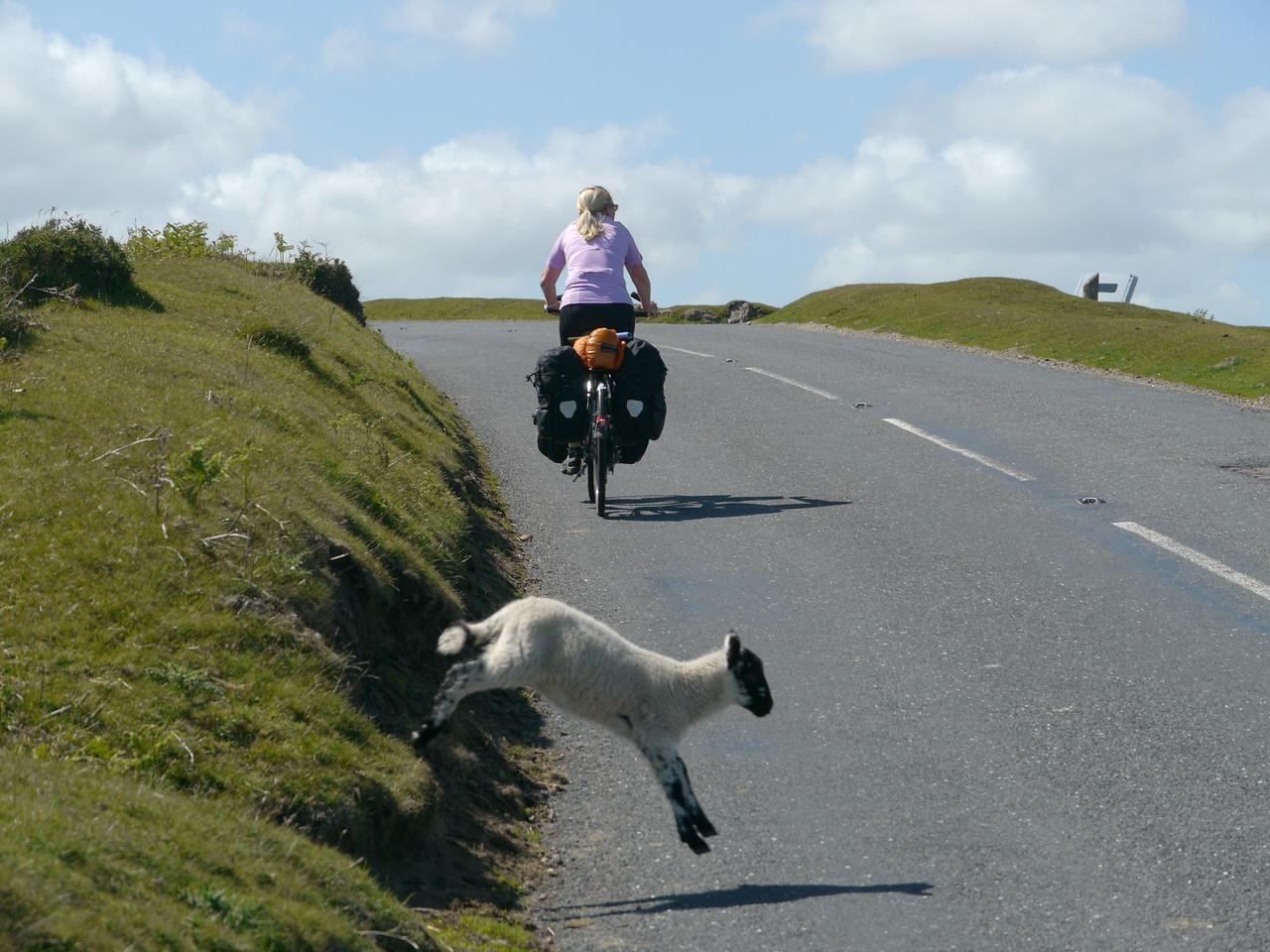 © RobAng 2011, Velotour GB (Dorset-Devon-Cornwall), Devon, North Bovey, North Bovey, 355 m