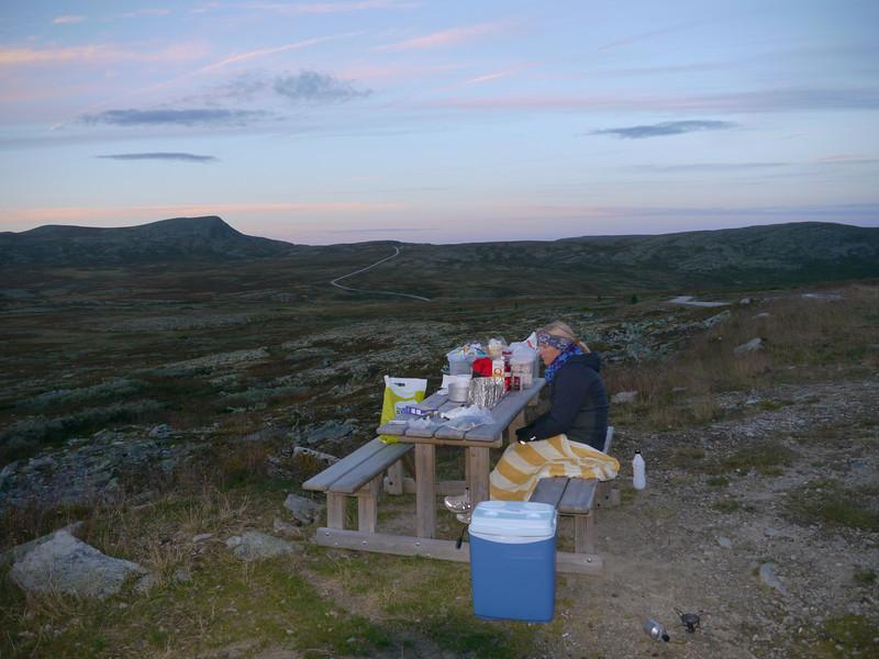@RobAng 2012 / Brenna, Friies-Weg von Ringebu nach Atna, Oppland, NOR, Norwegen, 1072 m ü/M, 03.09.2012 20:18:36