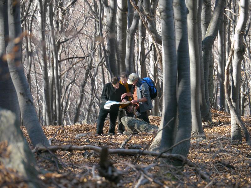 Drei Männlein stehn im Walde...