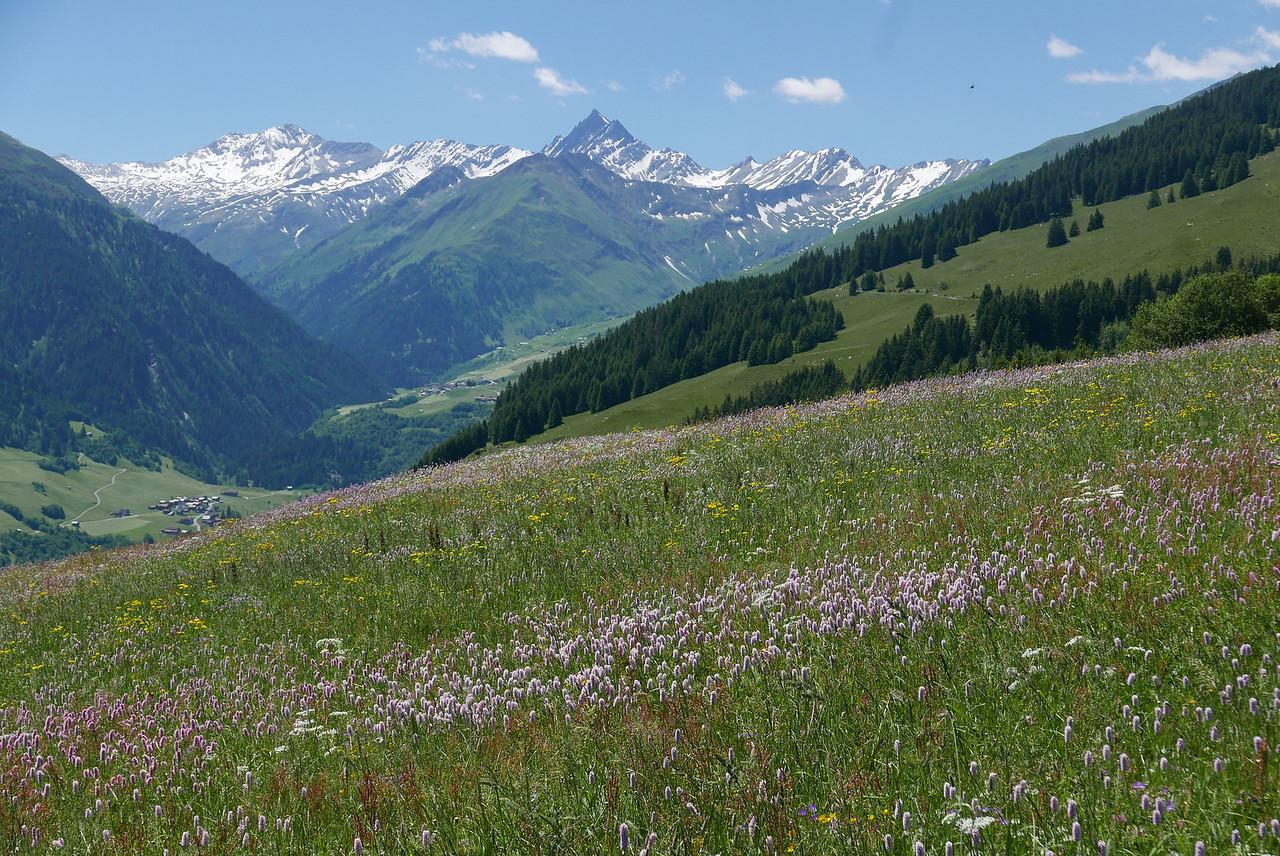 @RobAng 17.06.17, 13:05: Lumbrein, 1628 m, Vignogn, Kanton Graubünden, Schweiz (CHE)