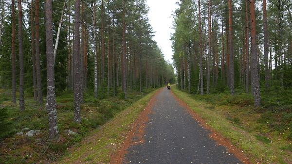 @RobAng 08.09.18, 17:29: Slätteryd, Nissafors, Jönköping, Schweden (SWE), 181.787 m