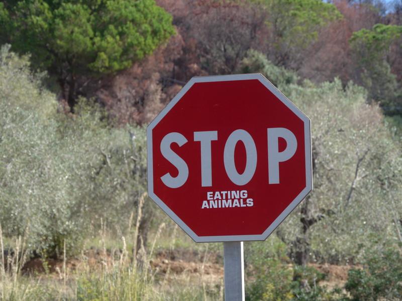 @RobAng 12.09.17, 09:44: Roccamare, 4 m, Castiglione Della Pescaia, Toscana, Italien (ITA)