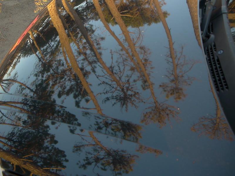@RobAng 17.09.17, 18:07: Maremma Nationalpark, 4 m, Alberese - Cala di Forno, Toscana, Italien (ITA)