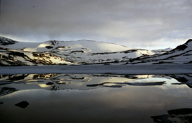 Finse, Rallarvegen - Hardangervidda (N). Etappe 8, Di 23.6.98: Geilo - Finse, 54km