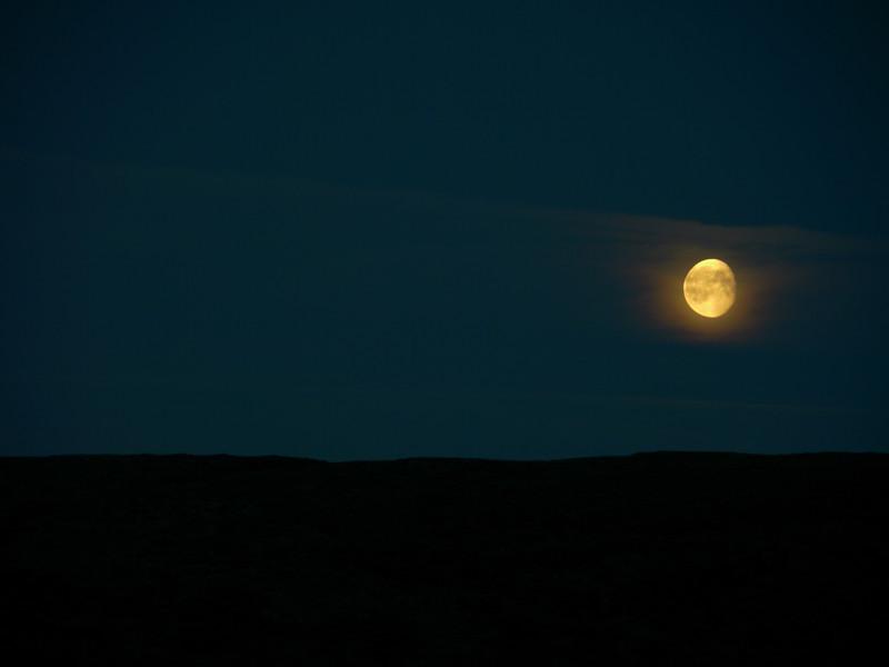 @RobAng 2012 / Brenna, Friies-Weg von Ringebu nach Atna, Oppland, NOR, Norwegen, 1072 m ü/M, 03.09.2012 20:53:25