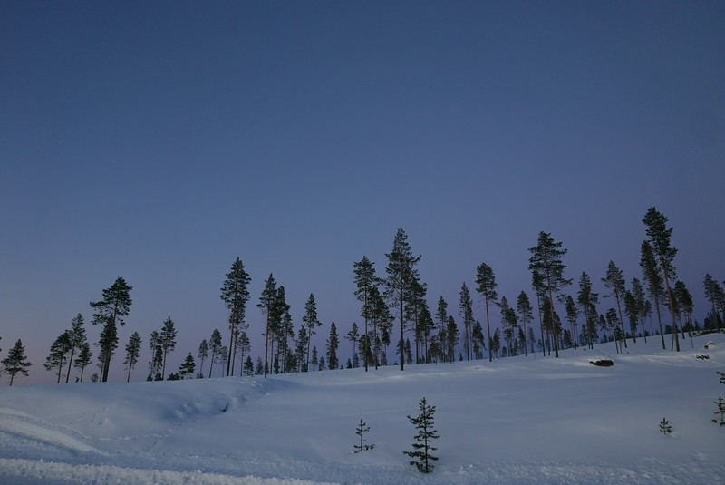 @RobAng 07.03.17, 18:29: Masugnsbyn, Svappavaara, Norrbotten, Schweden (SWE)
