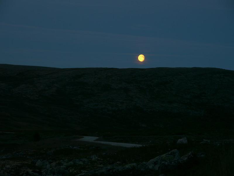 @RobAng 2012 / Brenna, Friies-Weg von Ringebu nach Atna, Oppland, NOR, Norwegen, 1072 m ü/M, 03.09.2012 20:45:42