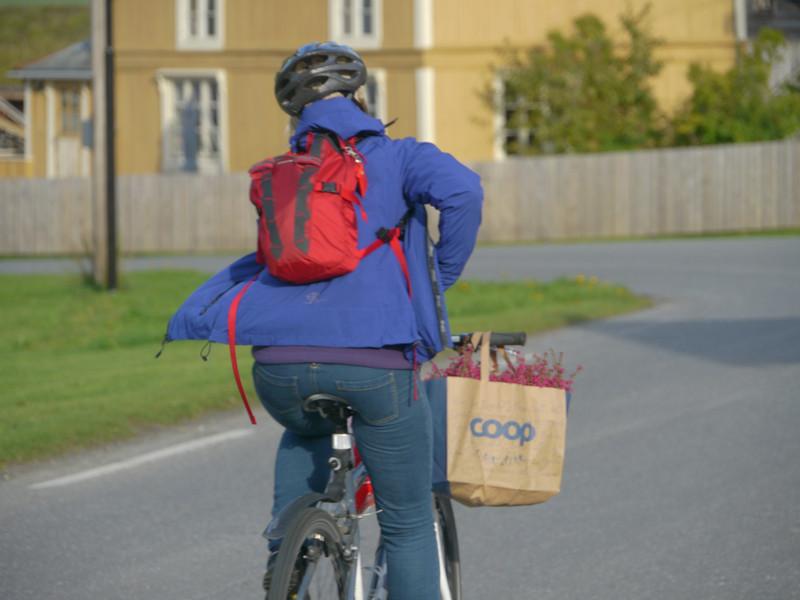 @RobAng 2012 / Misvær, Misvær, Nordland, NOR, Norwegen, 80 m ü/M, 18/09/2012 15:29:57