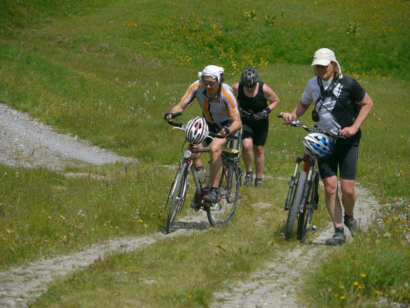 Fideriser Heuberge, Fideris, 2036.22 m, Schweiz / 2012/07/27 14:08:15